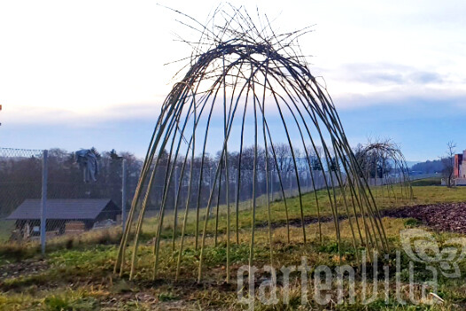 Gartentipp Februar 2020: Häuser, Tipis und Höhlen aus Weidenästen – originell und robust
