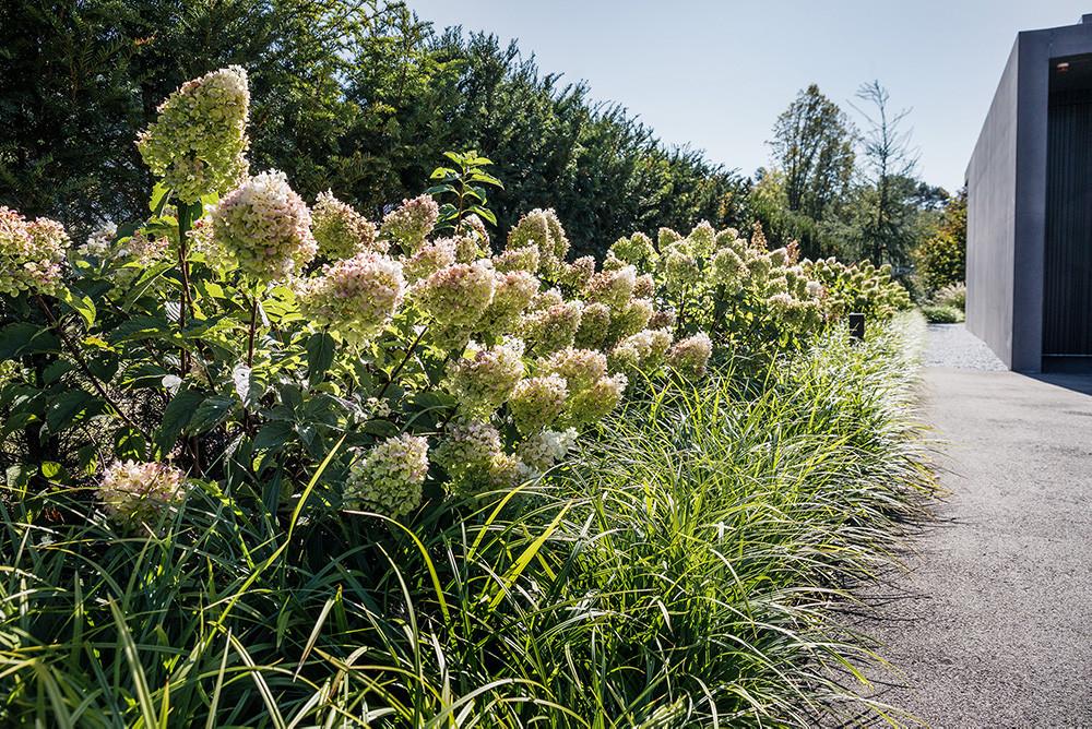 Gartentipp September 2020: Gärten im September – Der Sommer ist noch nicht vorbei