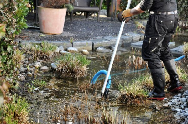 Gartentipp März 2021: Frühlingsbeginn mit der Teichpflege