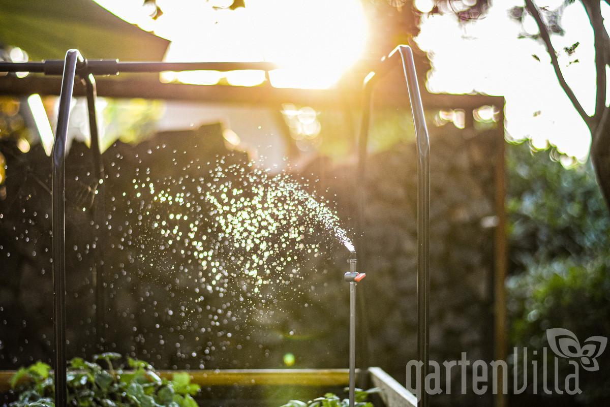 Gartentipp Juli: Automatische Bewässerung zielgenau für Pflanzen und Rasen einsetzen